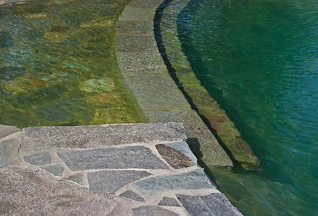 Naturpool - Beregnung und Bewässerung - Galeriebild