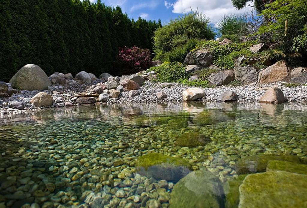Gartenteich schwimmteich und pool gartengestaltung mit naturstein leipzig krostitz - Bilder gartenteich ...