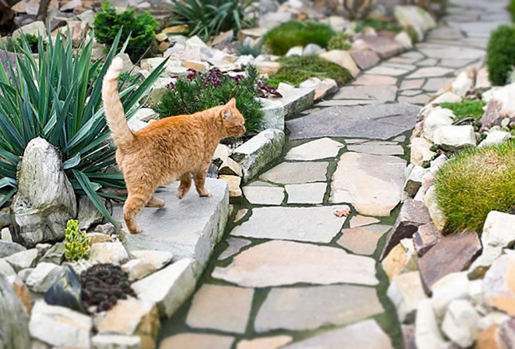 Garten Mediterran Und Pflegeleicht Gartengestaltung Mit Naturstein