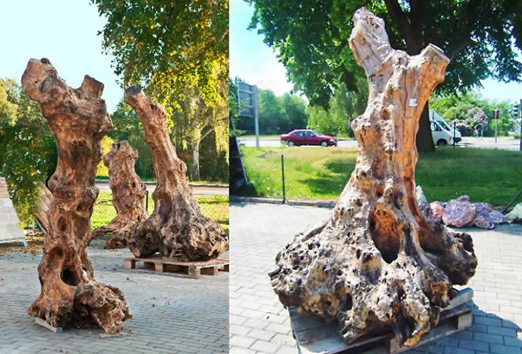 Holzskulpturen Und Designermöbel Aus Olivenbaum Gartengestaltung