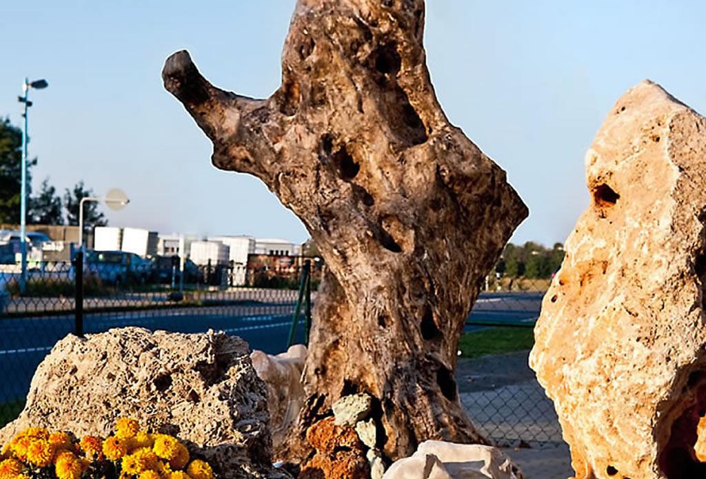 Kalkstein als Pflanzstein - Musterhaus Ausstellung Naturstein Garten - Galeriebild