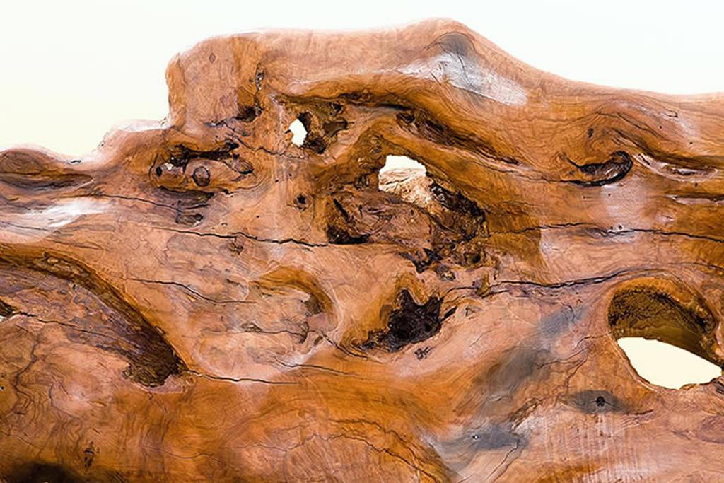 Olivenholz, Olivenbaum - Galeriebild