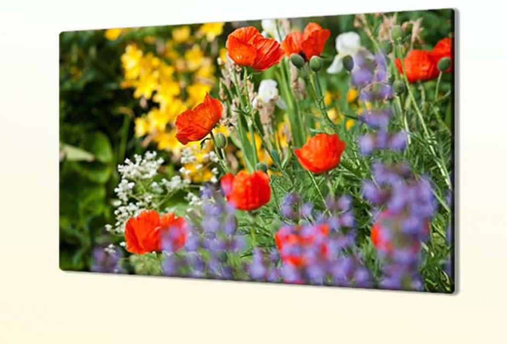 Blumenbilder, Gartenbilder - Olivenholz - Galeriebild