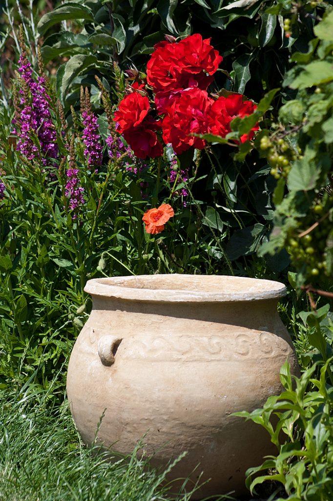 Garten Pflanztopf Keramik Blumen Garten und Landschaftsgestaltung in Krostitz bei Leipzig