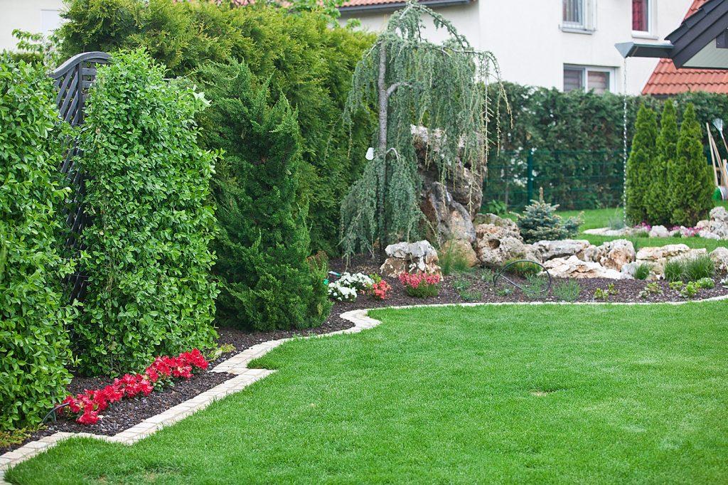 Lieblingsplatz im Garten